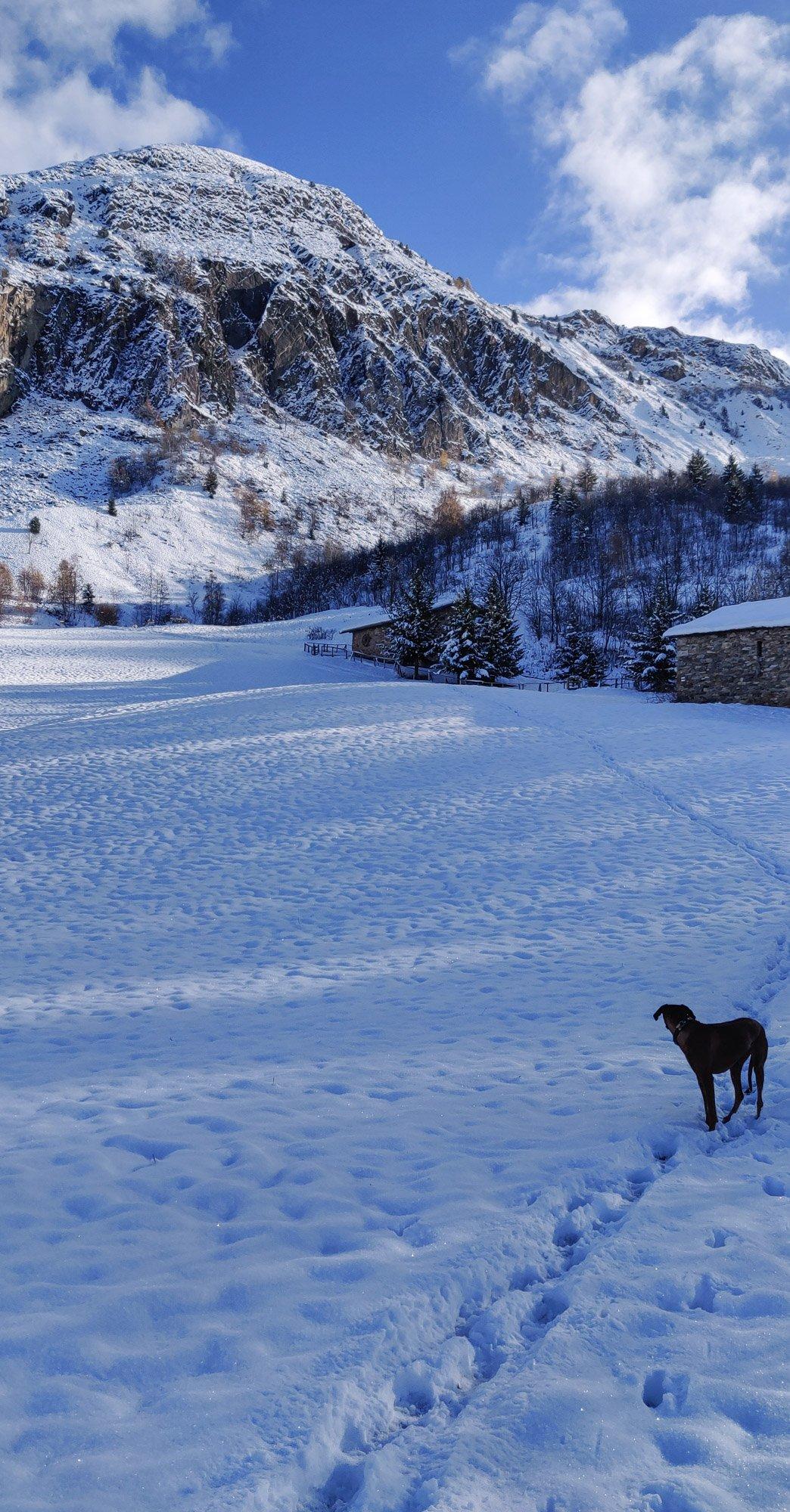 Winter walk in the Belleville Valley - First snow of 2019/29
