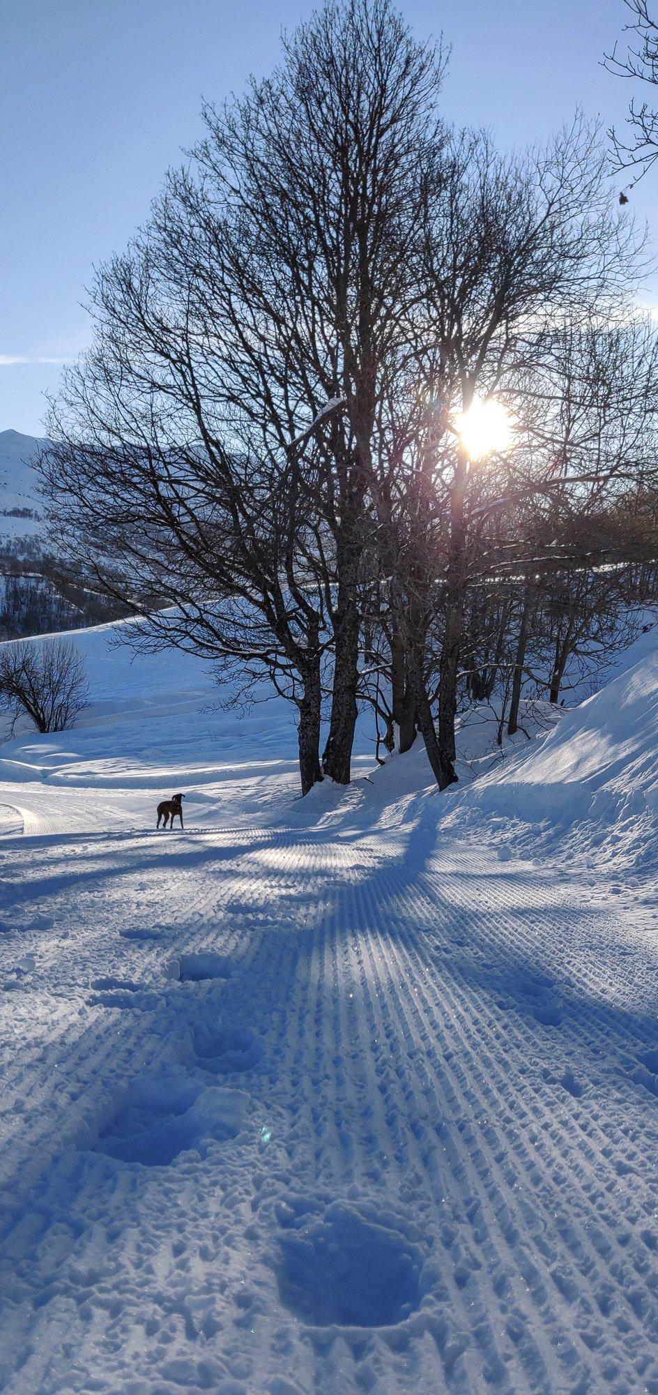 Sunny walk on freshly groomed track in Le Chatelard
