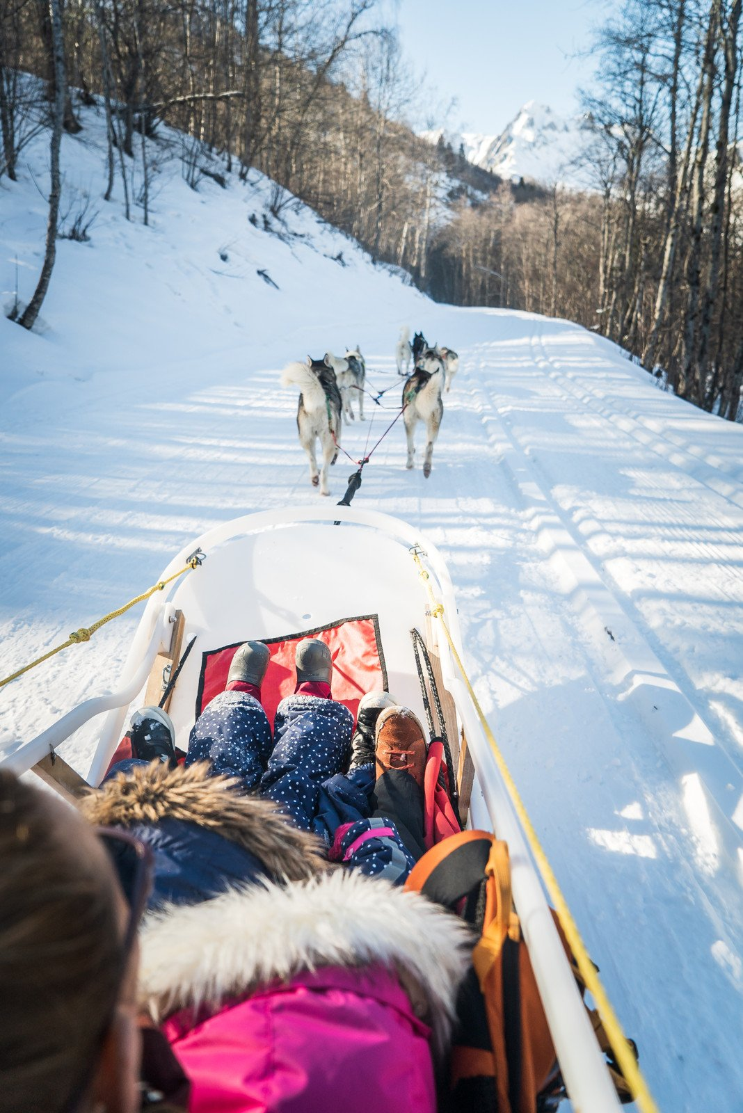 Dog sleigh ride with friendly huskies in St Martin de Belleville - A magical day in the snow.